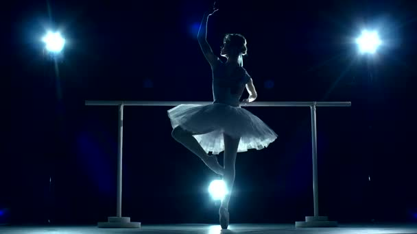 Beautiful ballet dancer on a blue, Ballerina is wearing  tutu. slow motion