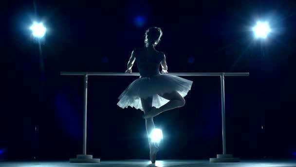 ballet dancer on a blue, Ballerina is wearing  tutu. slow motion
