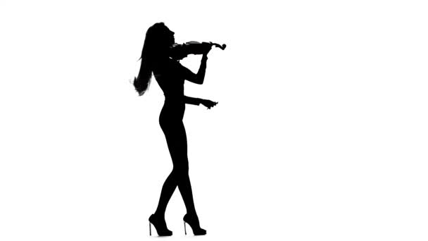Girl rofessional violinist playing the fiddle. Silhouette