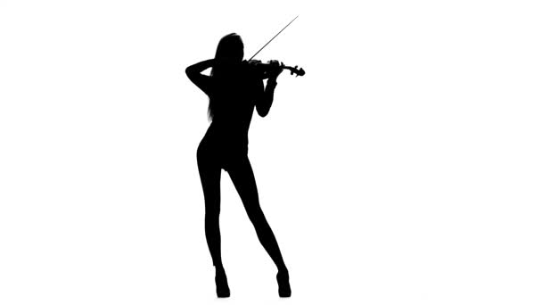 Woman violinist playing the fiddle. Silhouette