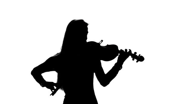 Woman fiddler playing the viola. Silhouette