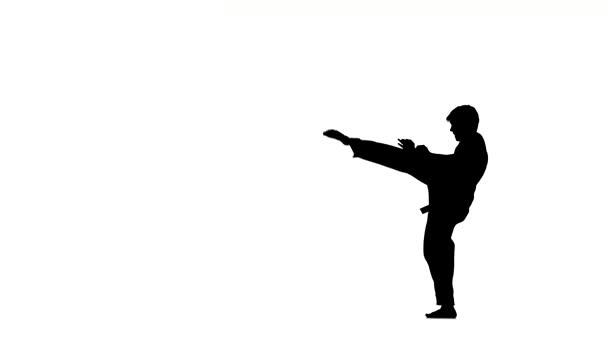 Karate. teakfa ember teszi több komló körül, Silhouette