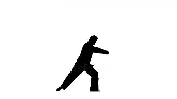 karate és a taekwondo egy fekete kimonó, egy fehér háttér, Silhouette