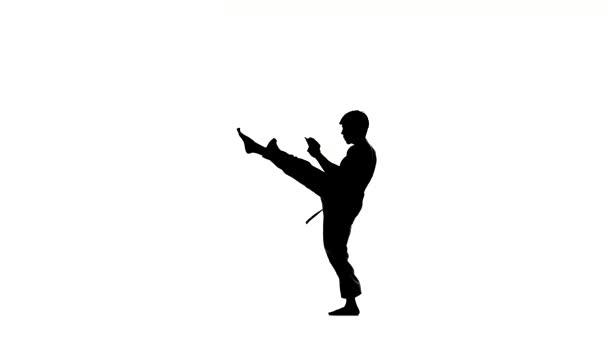 Karate nebo taekwondo dělá několik směrování kolem vás, silueta