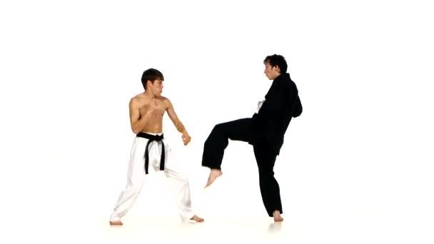 martial arts. karate vagy a taekwondo show készségek a csatatéren