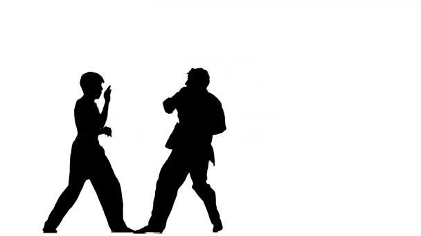 sparrynh taekwondo és egy fehér háttér, karate egymástól, Silhouette