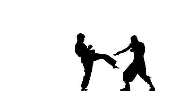 Csata a karate és a ninja, akik sztrájk egymást két ember fúj sziluett