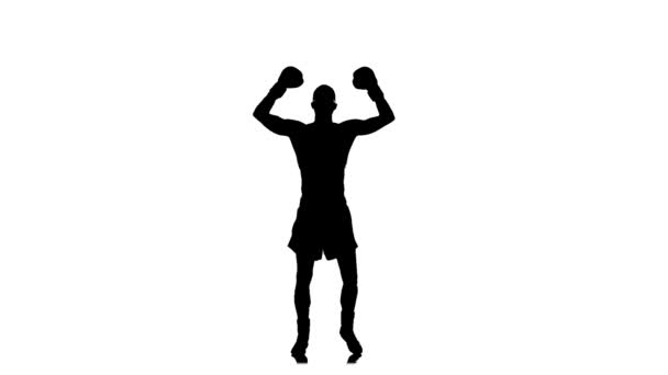 Winner of a boxing match rejoice victory. Silhouette, slow motion