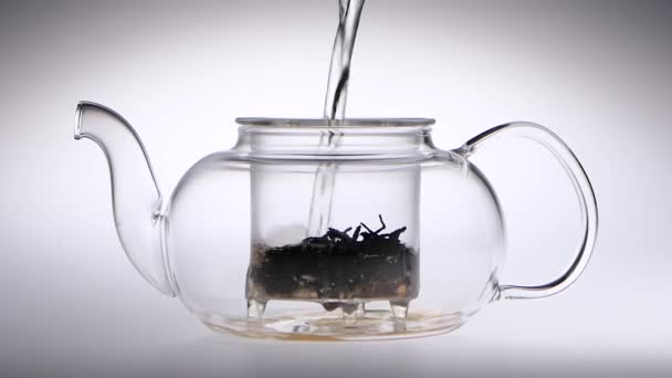 Boiling water is poured into transparent teapot with tea leaves