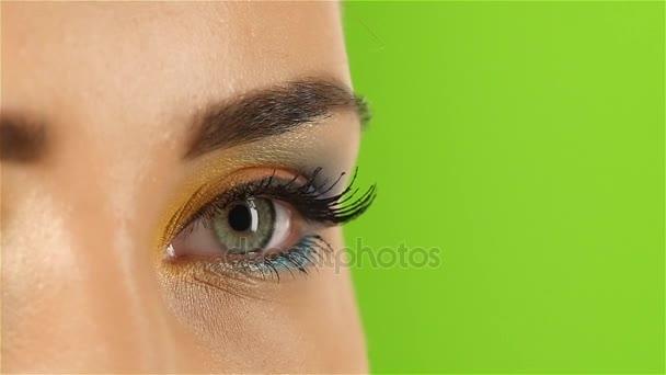 Mädchen mit strahlend schönem Make-up, Visagist Künstler zeigt seine Professionalität. Nahaufnahme. Green Screen