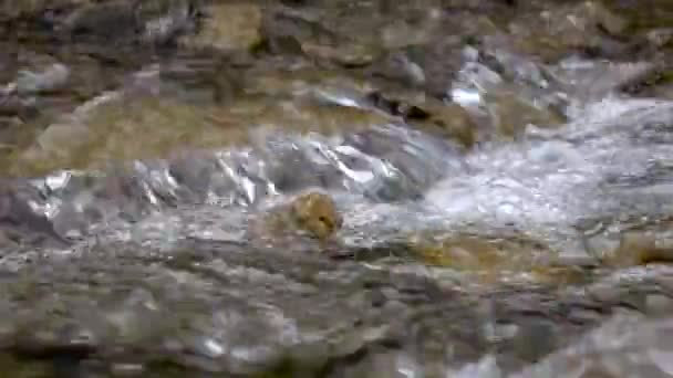 Closeups of water that overcomes rocky rapids of mountain landscape