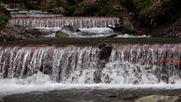 Lesní proudu horská řeka se valí přes skály. Zpomalený pohyb