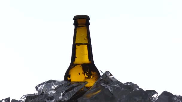Láhev tmavé studené pivo v ledu. Bílé pozadí. Silueta