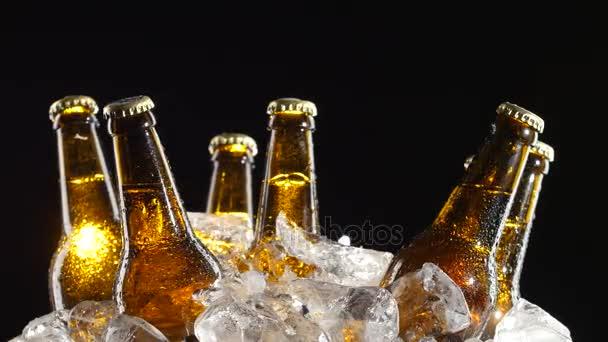 Lahve s tmavé pivo točit v kusy ledu. Černé pozadí. Detailní záběr