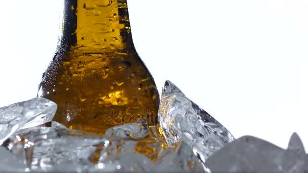 Fest der Bierkapazitäten sind Flaschen Bier im Eis. weißer Hintergrund. Nahaufnahme