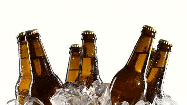 Opilý pivo v tmavých lahvích, stojí v ledu. Bílé pozadí. Detailní záběr