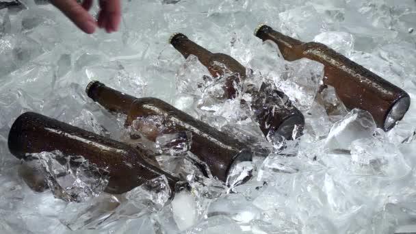 Chlap bere láhev vychlazeného piva. Bílé pozadí. Zblízka. Zpomalený pohyb