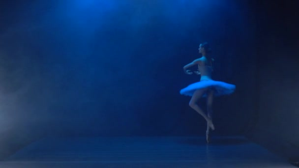 Ballerina in white tutu performing classical ballet. Slow motion.