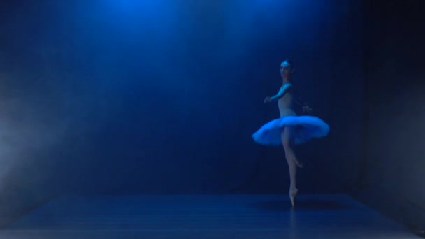Beautiful ballerina in white tutu performing classical ballet. Slow motion.