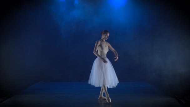 Dazzling ballerina in white tutu performing classical ballet. Slow motion.