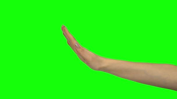Arm der Frau gestikuliert. Green Screen. Nahaufnahme