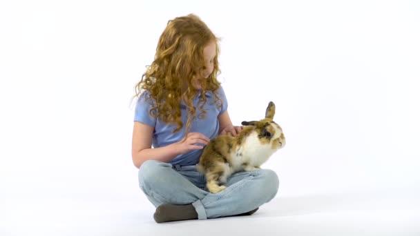 Rothaarige kleine Mädchen mit lockigem Haar streicheln flauschige dreifarbige Kaninchen auf weißem Hintergrund. Zeitlupe.