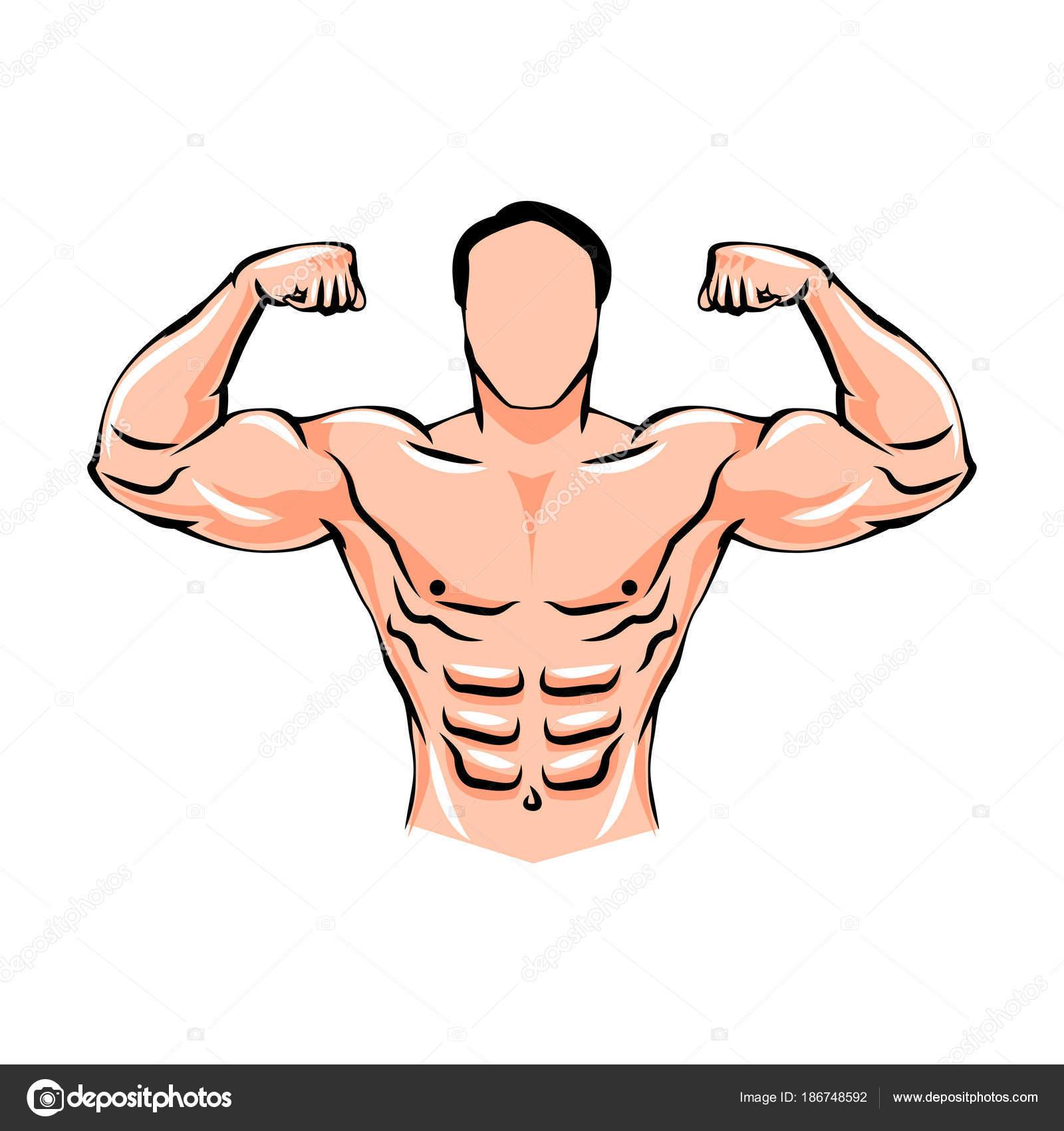Levantador de pesas masculino deportista. Culturismo. Deportes ...