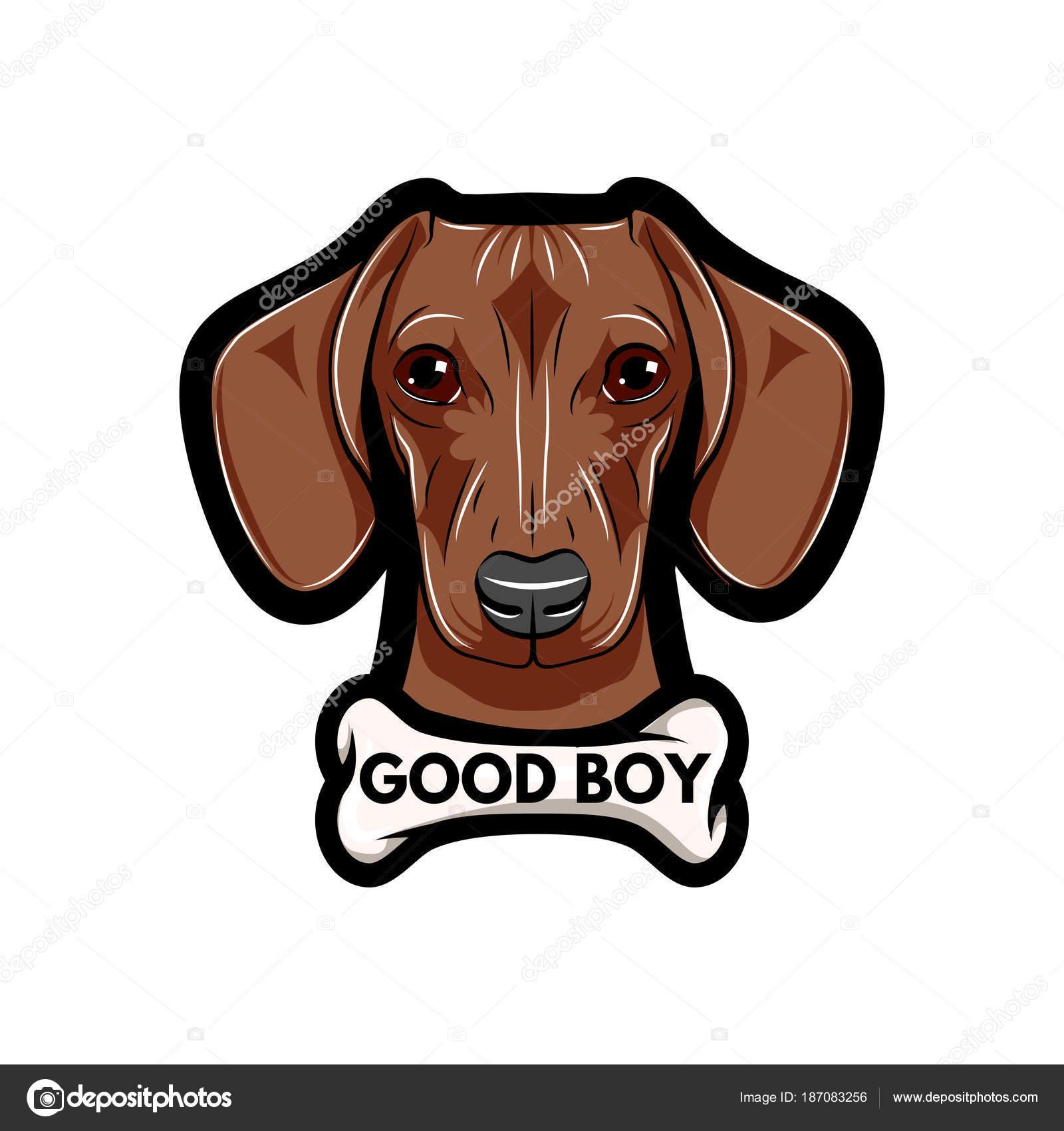 ベクトル イラスト肖像画のダックスフント犬骨付きいい子テキスト