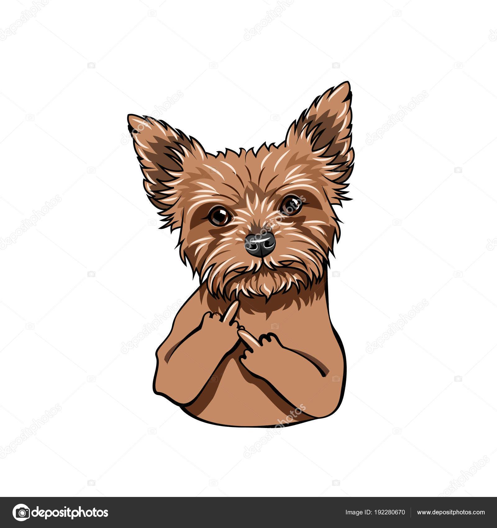 Yorkshire Terrier Dog Middle Finger Gesture Dog Portrait Vector