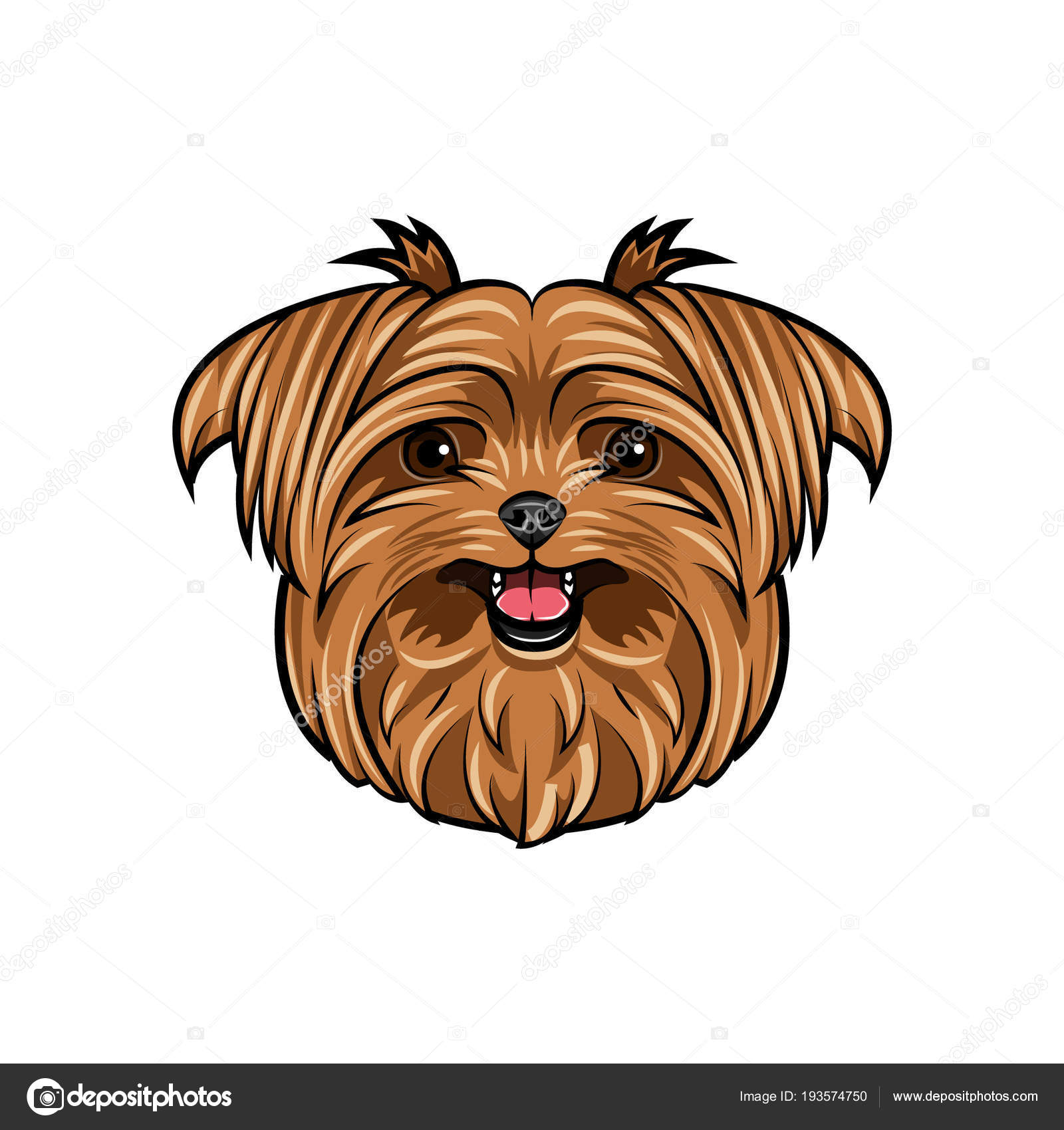 Dog Yorkshire Terrier Smiling Cute Dog Dog Breed Yorkshire