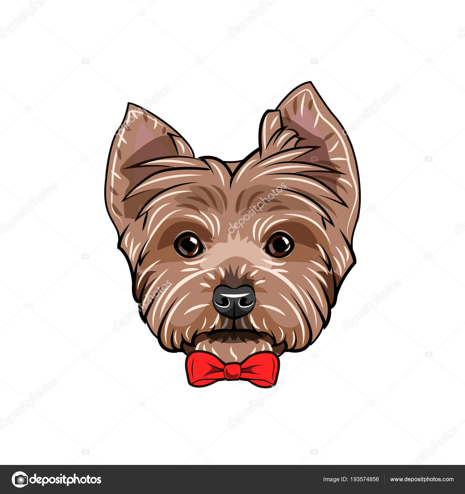 Must see Terrier Bow Adorable Dog - depositphotos_193574856-stock-illustration-yorkshire-terrier-dog-red-bow  You Should Have_784257  .jpg