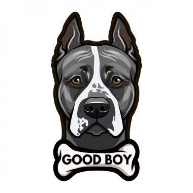 Staffordshire Terrier dog portrait. Bone. Good boy lettering. Vector.