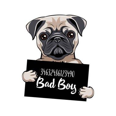Pug prisoner. Pug dog Bad boy. Dog criminal. Arrested dog. Vector.