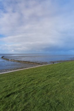 Beautiful view of the sea and breakwaters at low tide in Wierum in the Netherlands. The background is a blue sky with dramatic clouds.