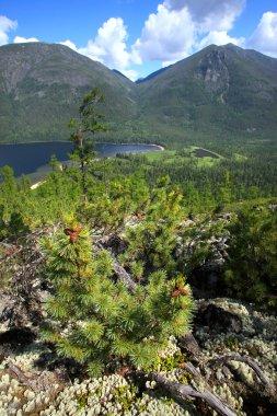 Lake Frolikha in the Baikal mountains