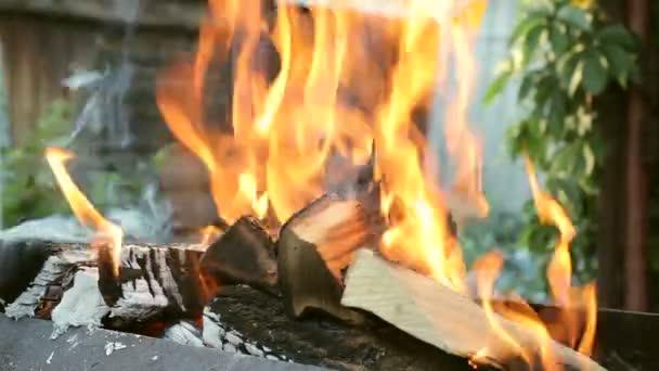 Hořící dřevo v krbu zblízka
