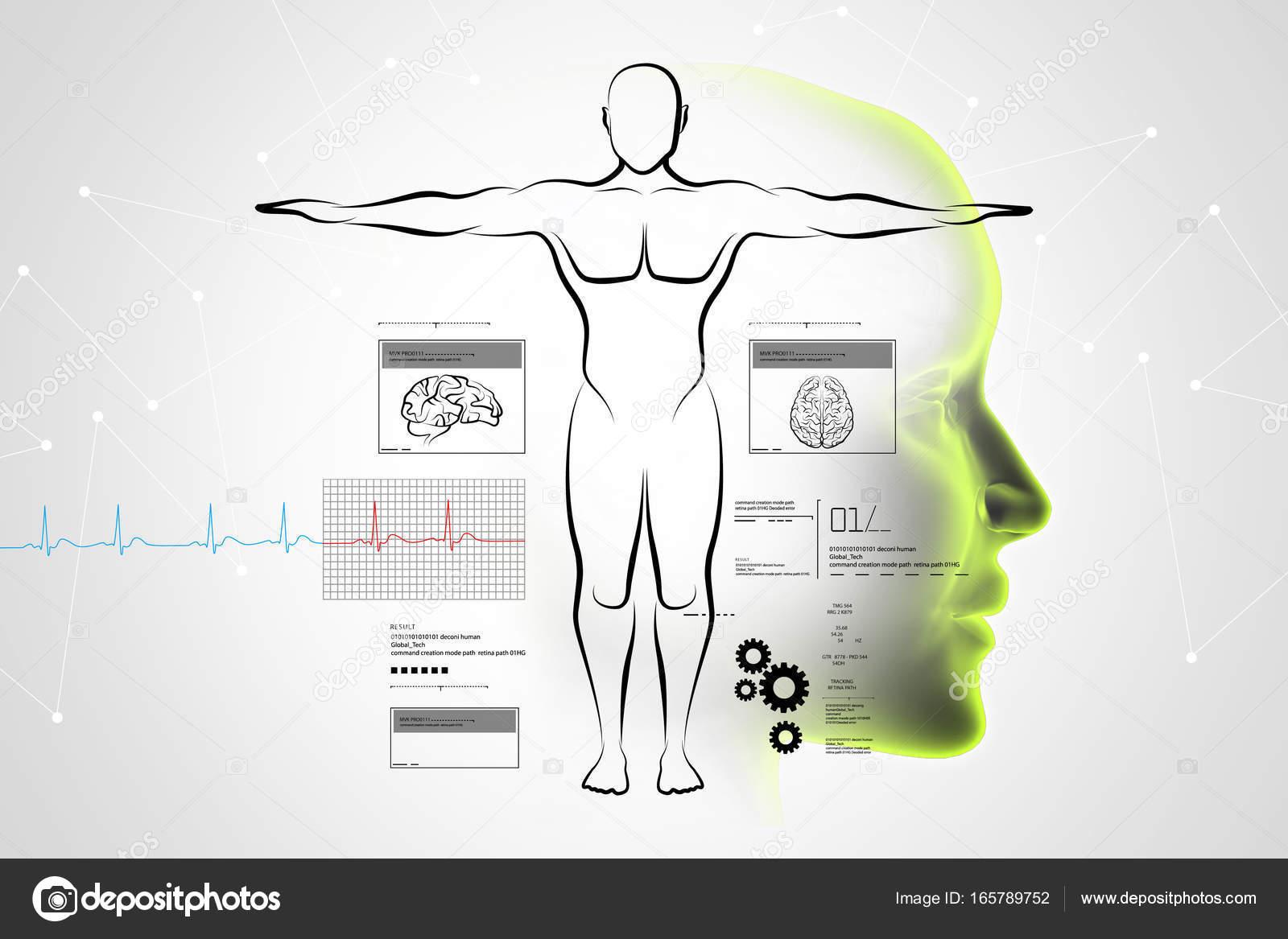 Ilustración digital de dibujo del cuerpo humano — Foto de stock ...
