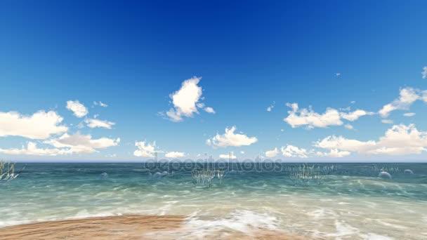 Hd Deniz Deniz Manzarası Doğa Arka Plan Deniz Stok Video Zozu