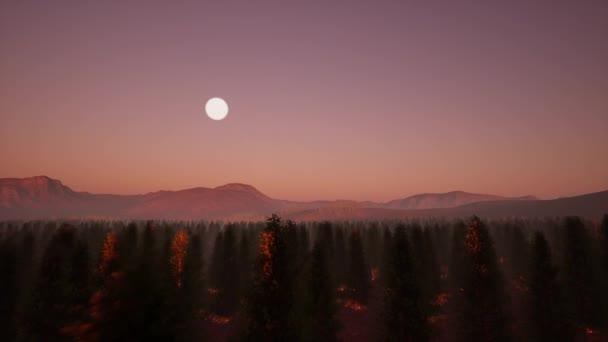 Tűlevelű erdő hold Természet táj. Éjszakai jelenet. Ködös táj.