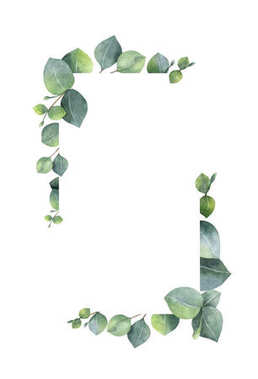 Watercolor banner with green eucalyptus leaves and branches.