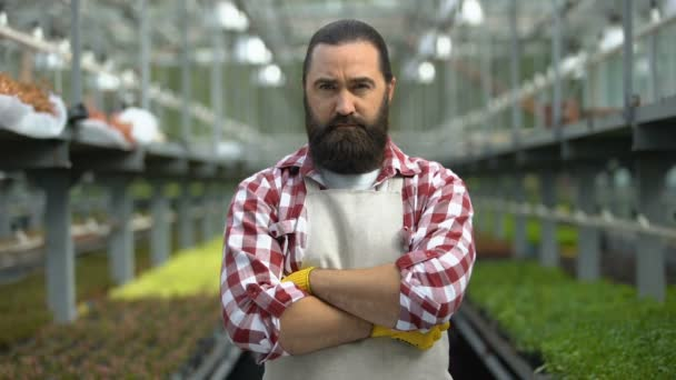 Vážný farmář zírá do kamery ve skleníku, znepokojený obchodními problémy