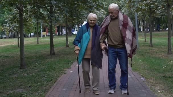 Starší pár s vycházkové hole procházky podél starší domácí park, podpora