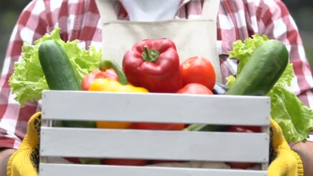Wooden box with fresh colorful vegetables in farmer hands, organic healthy food