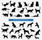 Fotografia Set di sagoma nera di cani e gatti