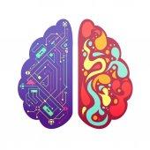 Pravé levé části mozku symbolické barevný obrázek