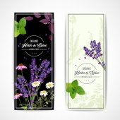Fotografie Herbal Banners With Wildflowers And Spices
