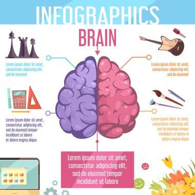Brain Cerebral Hemispheres Functions Infographic Poster