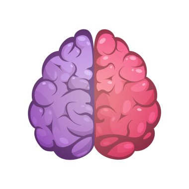 Right And Left Brain Symbolic Image