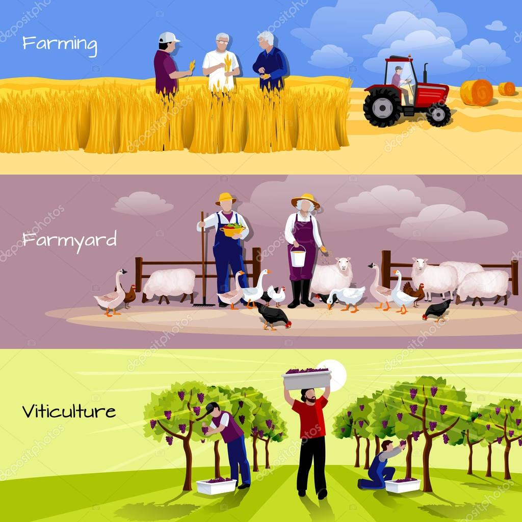 Vineyard Farmyard Crop Harvesting Flat Banners