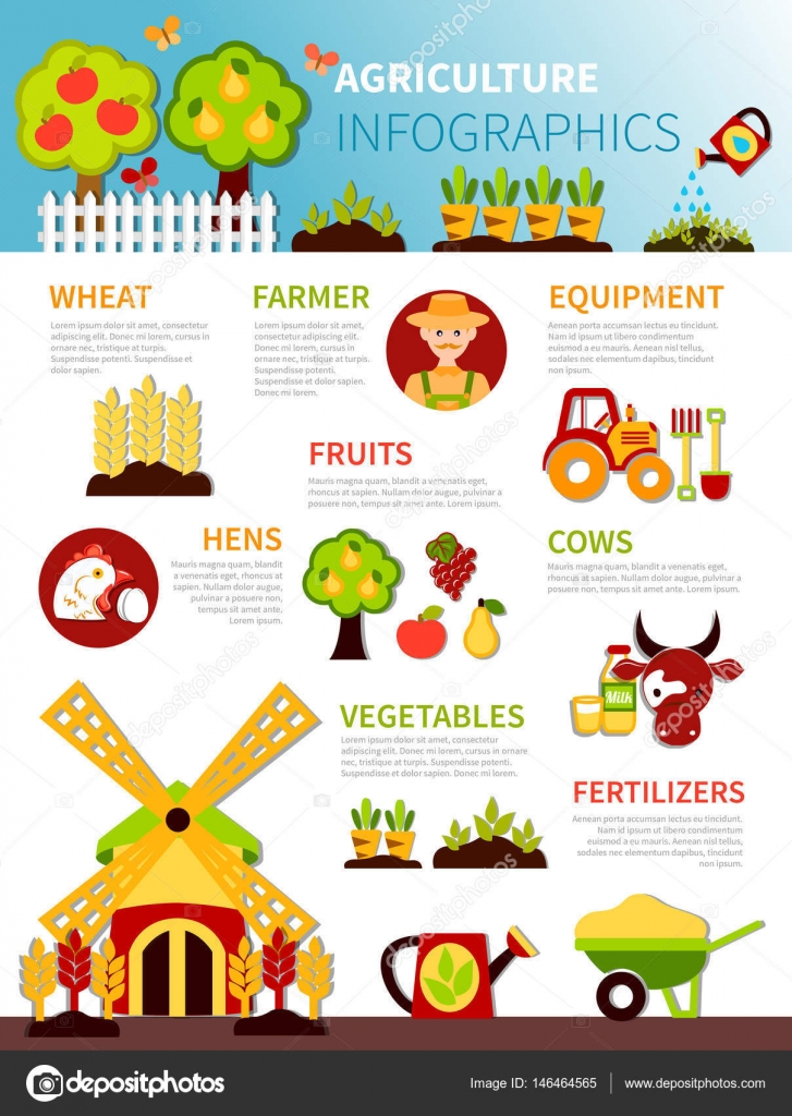 Agriculture Farm Infographic Poster  U2014 Stock Vector